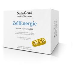 Zell Energie